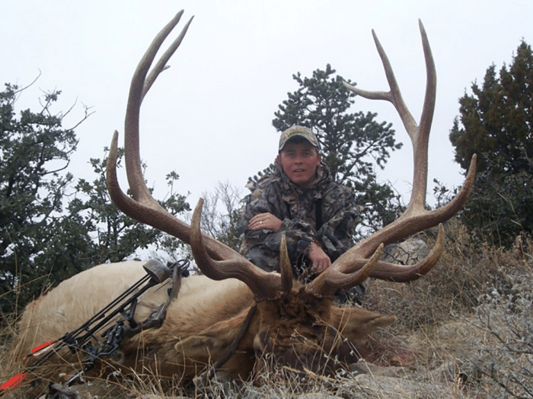 Guided New Mexico Elk Hunts
