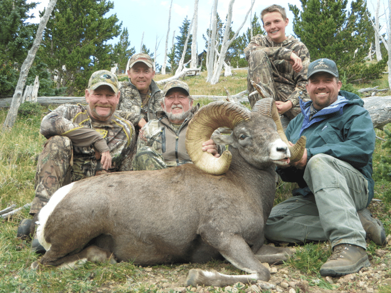 New Mexico Bighorn Sheep Hunts